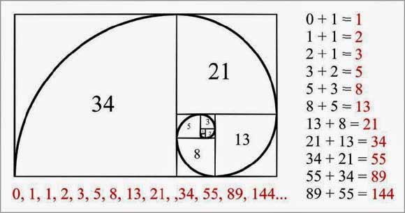 cara menggunakan fibonacci